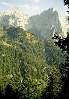 Wandern Höhenweg im Kaisertal - Wilder Kaiser 19