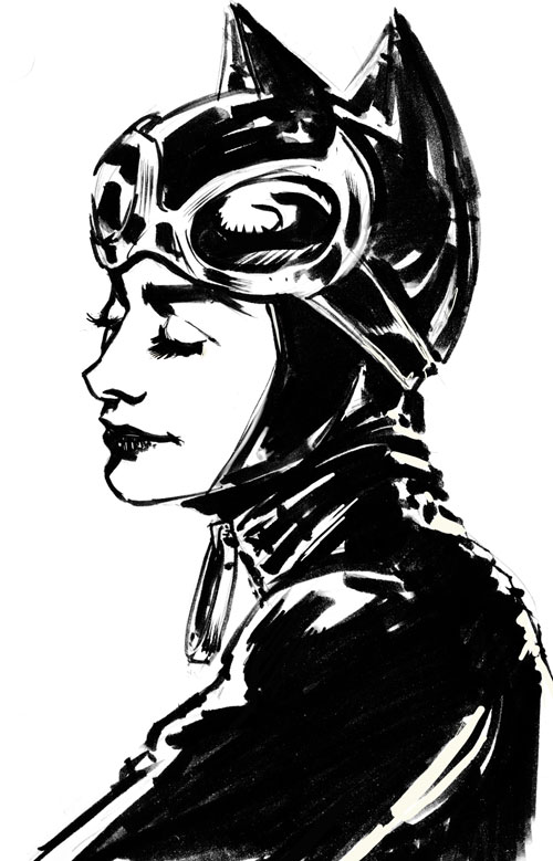 The Women Of Dc Comics Ink In Adam Withers S Dc Comics: Dave Stokes Sketch Blog