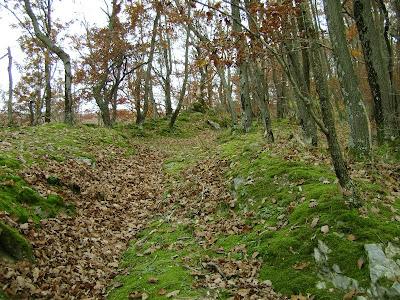 Planinarska staza 50