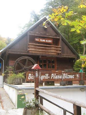 Pilana Bliznec