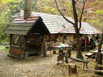 Pozadina Gorščice