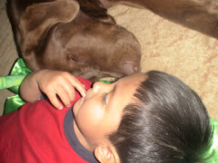 Waylon and Swade (our Chocolate Lab)