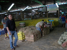 Pedagang Melon