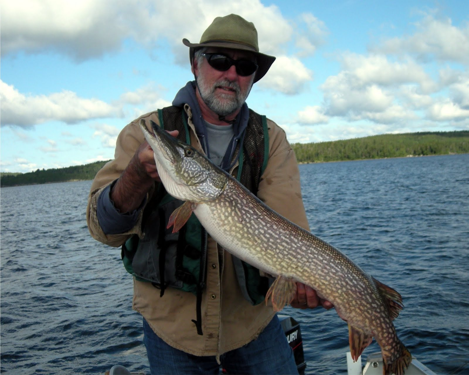 Clearwater lake walleyes vermilion bay lodge for Walleye fishing tips