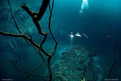 foto sungai di dalam laut