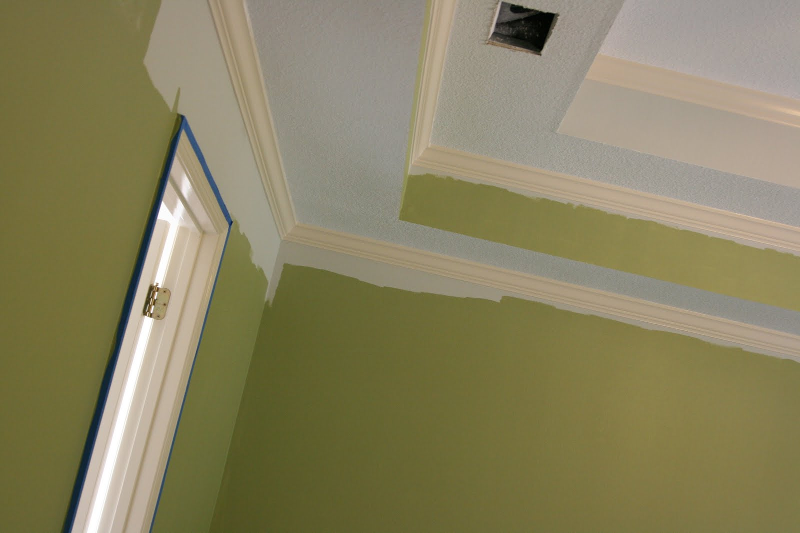 SherwinWilliams Paint Color Rye Grass