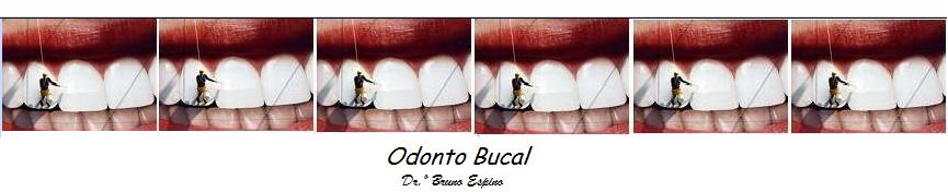 Odonto Bucal