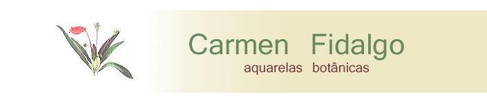 carmen fidalgo
