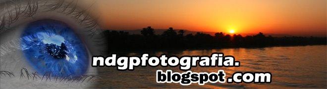 neliopereira@fotografia