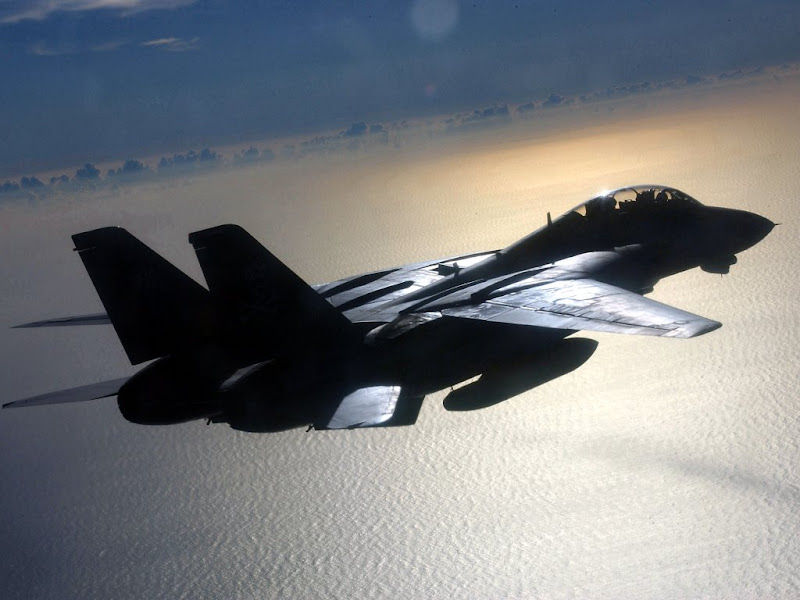 F-14 Tomcat USA Supersonic Jet  Figthers