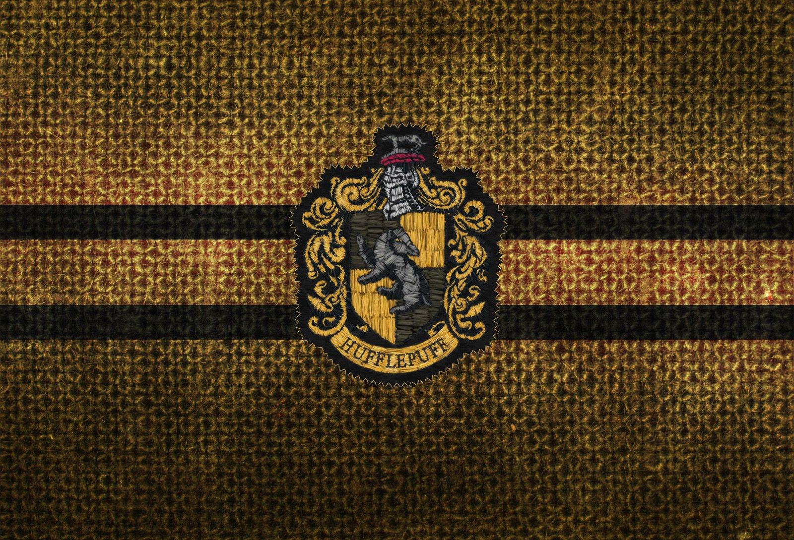 http://4.bp.blogspot.com/_SpXj_j5L2ew/TDzLPSz4nzI/AAAAAAAAAWo/L5DSF5brXRc/s1600/knit_hufflepuffwall.jpg