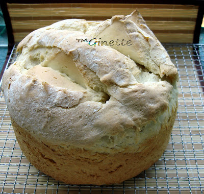 Articole culinare : Paine rustica