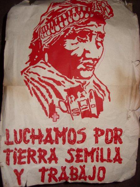 LUCHAMOS X TIERRA SEMILLA TRABAJO
