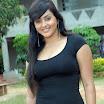 South Actress Namitha Hot Images!
