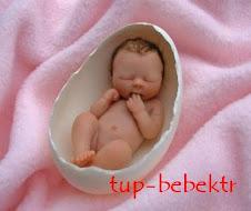 Tüp Bebek , Tüp Bebek Merkezi