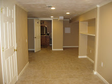 Finished Basement, S. E. side