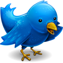 twitter logo bird