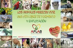 APLAB - Bolivia (haga click en la imagen)