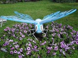 Это ос или пчёл?