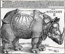 El rinoceronte de Durero