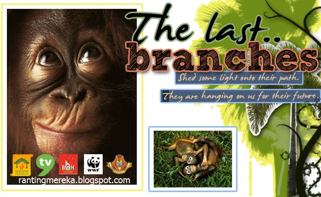 The Last Branches