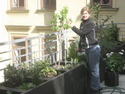 Christa's Vienna Garden