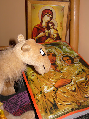 Religious Camel