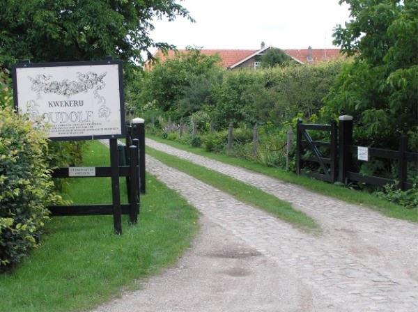 Bliss Piet Oudolf 39 S Private Garden