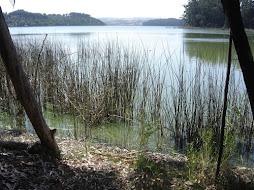 Laguna Matanza, Reserva Nacional el Yali.