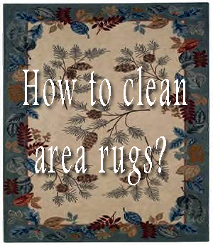 how to clean wool area rugs yourself