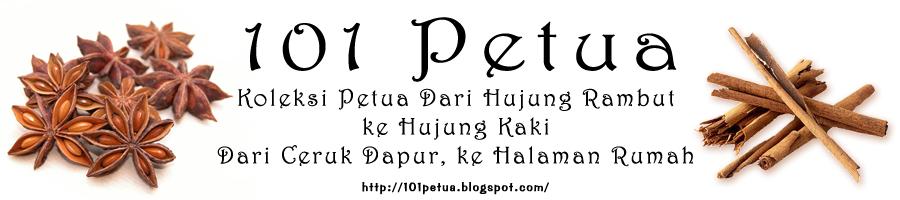 101 Petua