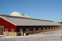 melkefabrikken vår ;)