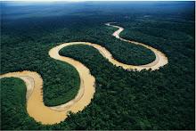 Nuestra Amazonía