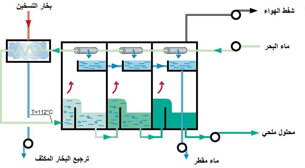 [MSF+3.jpg]