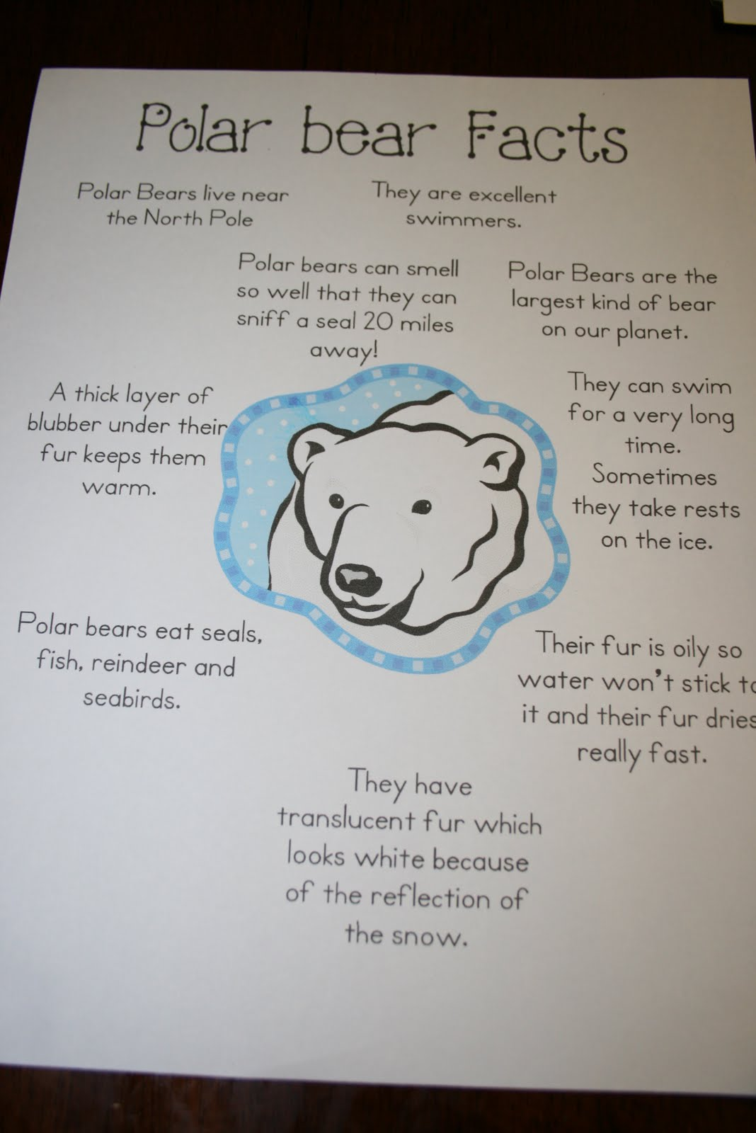 """He played with his Animal Planet """"polar animals"""" set that he got for ..."""