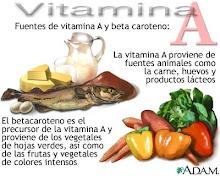 Vitaminas que actuan como coenzimas