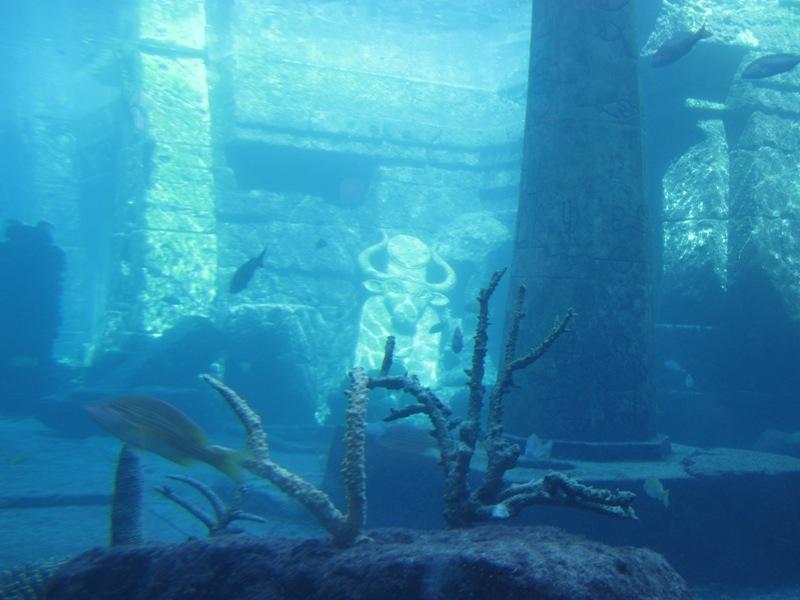 Country Gourmet Traveler Atlantis Paradise Island Bahamas