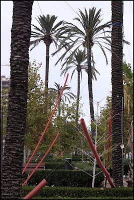palmeras Valencia