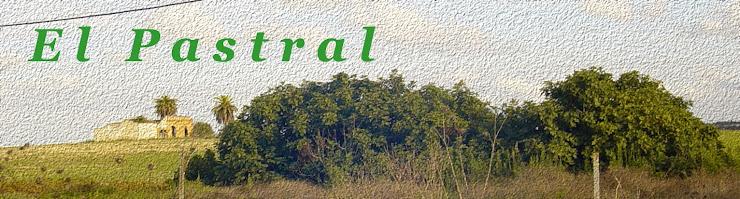 (())  El Pastral  (())
