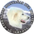 Perros Montaña del Pirineo
