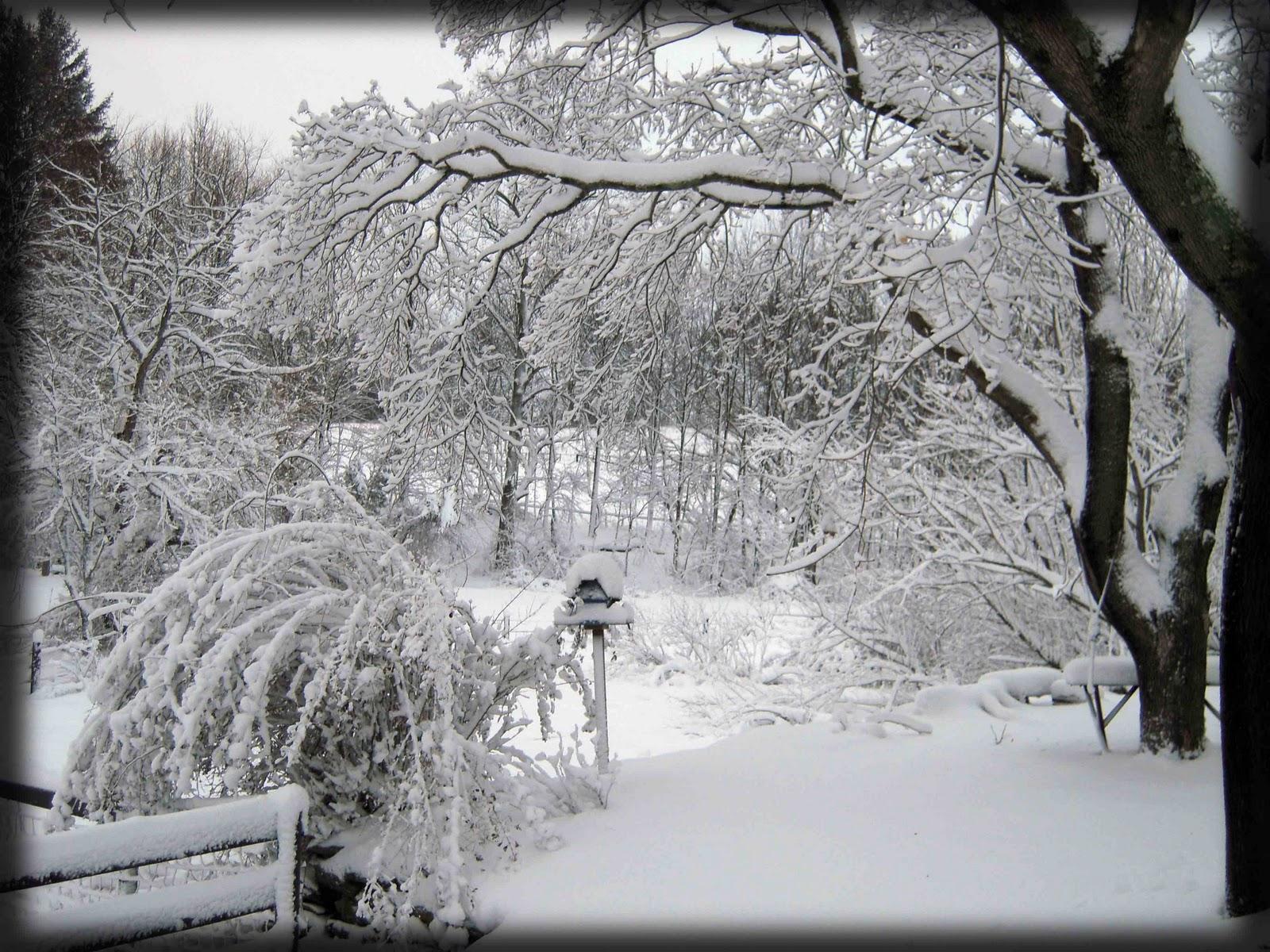 Meadow Creek Farm Scenic Snow Storm