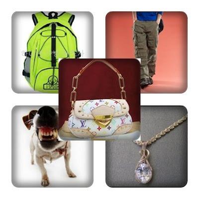 Anti-snatch Theft Tips
