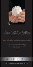 MIGUEL ANGEL GARCÍA PADILLA / insignias Mutadas
