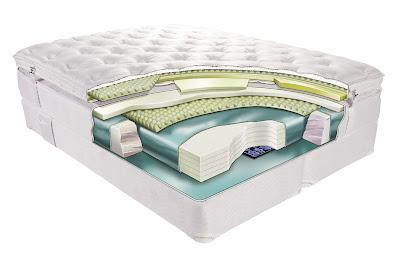Su Yatağı Çesiti