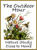 The Outdoor Hour Nature Study