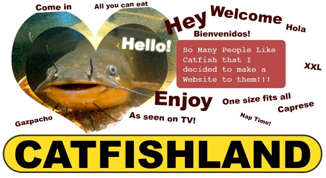 I Like Catfish