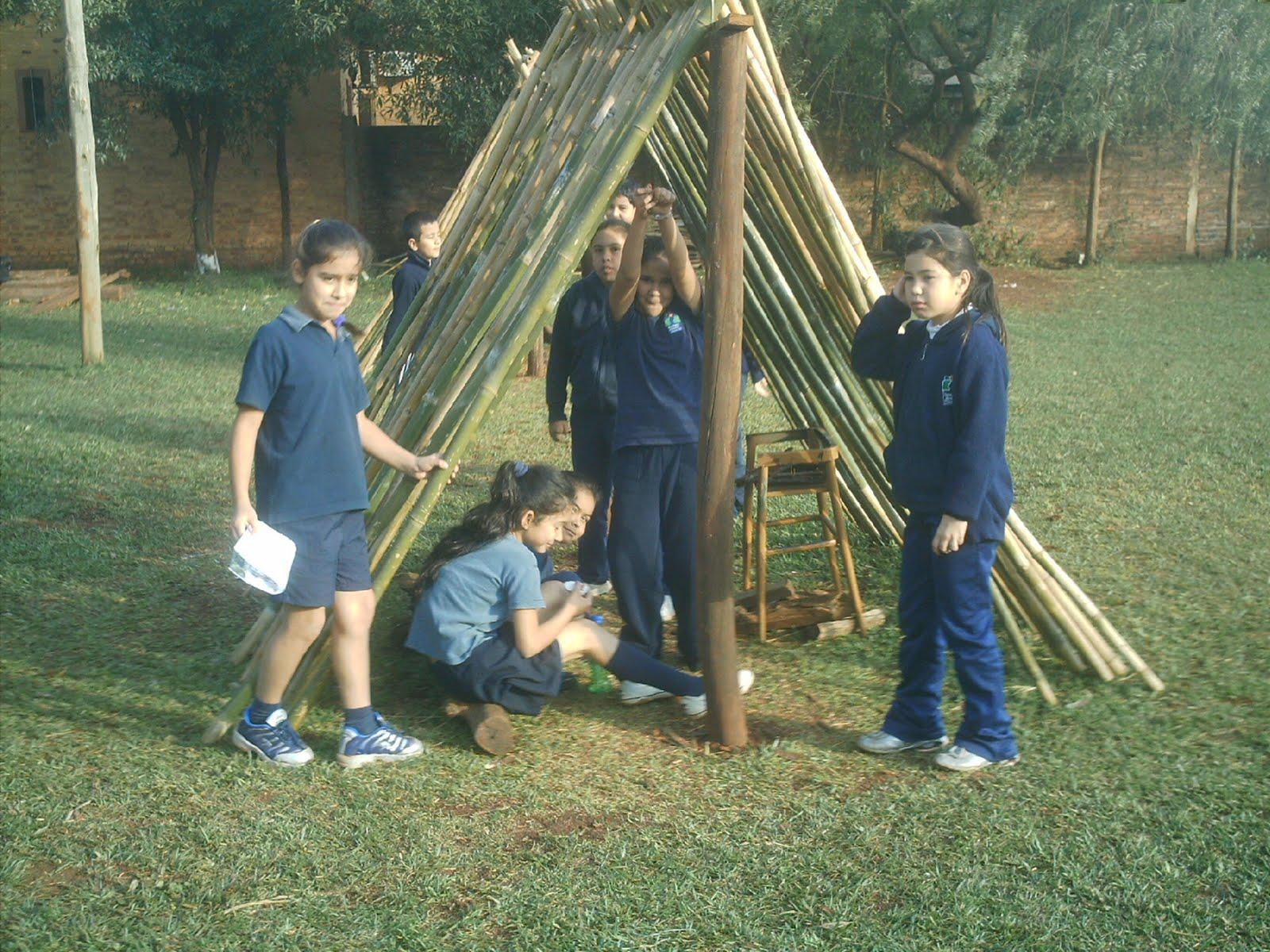 A a huerta y vivero escolar for Actividades de un vivero