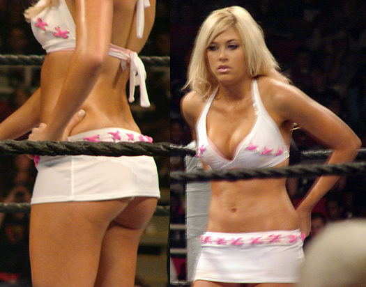 kelly kelly extreme expose
