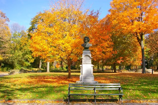 Walk In New York - Brooklyn - Automne Fall - Prospect Park -Statue de Beethoven