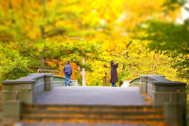 Walk In New York 2009 - Prospect Park Brooklyn - Automne - Tilt Shift
